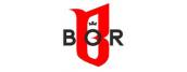 Biuro Ochrony Rapu / B.O.R